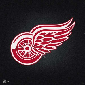 Detroit red wings black background ps4 console and controller bundle skin 1504119981 sknblknhl25ps4bnd pr 04